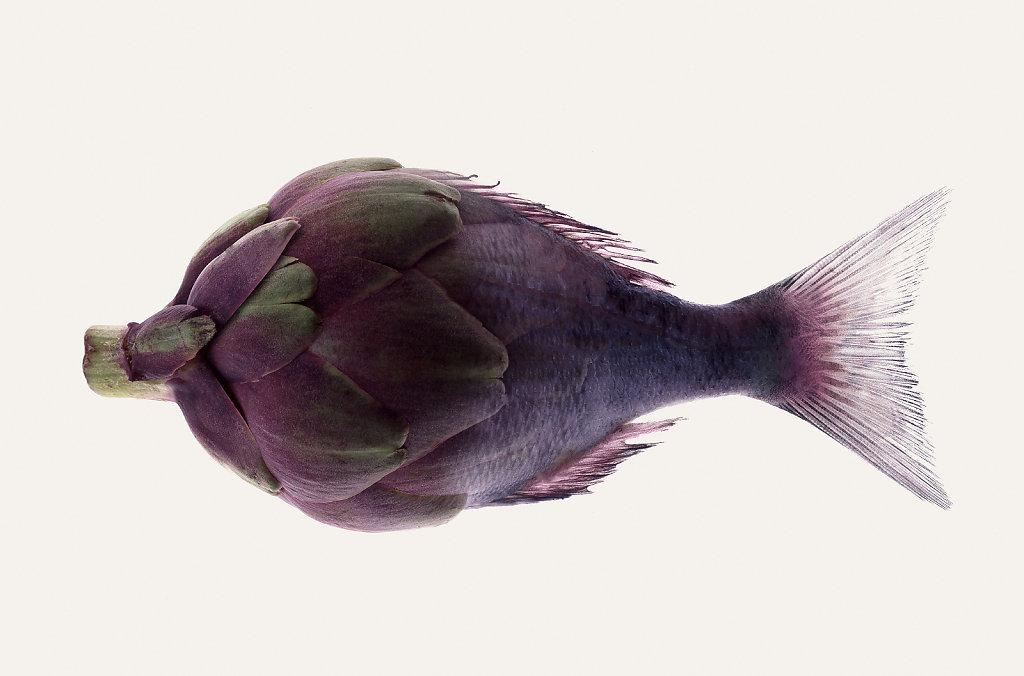 Delhaize-poisson-vertical.jpg